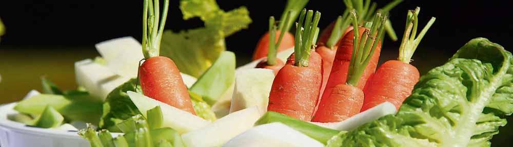 vegan, die günstigsteernährung