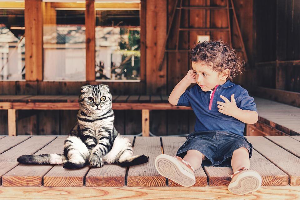 child-3858368_960_720.jpg