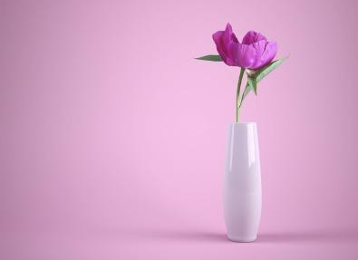 flower-3175428_960_720.jpg